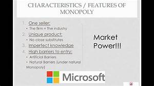 Monopoly - Characteristics Of Monopoly Firm
