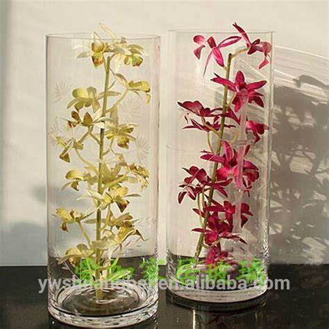 clear glass vase ideas images  pinterest