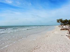 honeymoon island state park florida another walk in the With honeymoon island state park
