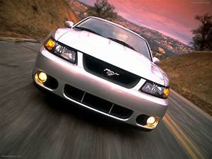 Flashback Friday: Mustang Terminator Edition - Moto Networks