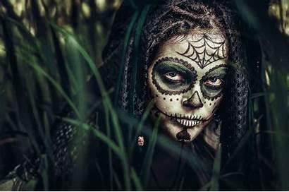 Skull Sugar Wallpapers Desktop Backgrounds Jungles Horror