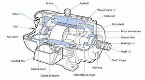 Leeson Motor Parts Diagram