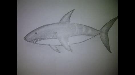 como dibujar  tiburon  dibujo  principiantes