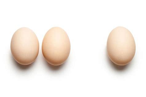 tout sur l œuf le cuisiner le conserver