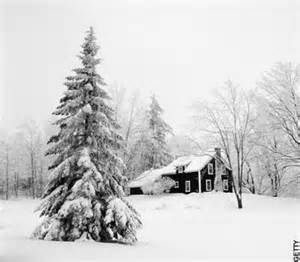 Black and White Christmas Snow Scenes