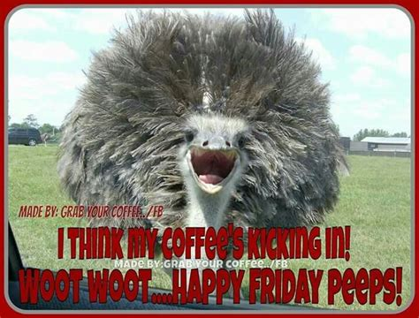 Already you have found some amazing good morning coffee love pictures with beautiful wishes and also with the images of some good morning gorgeous coffee mug which can be your best choice of coffee facebook status. Woot Woot | Funny cute memes, Happy coffee