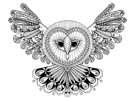 Owl with big head   Owls   Coloring pages for adults