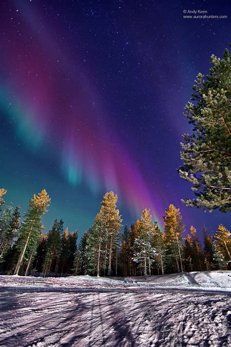 finland northern lights spaceweather northern lights photo gallery january 2012
