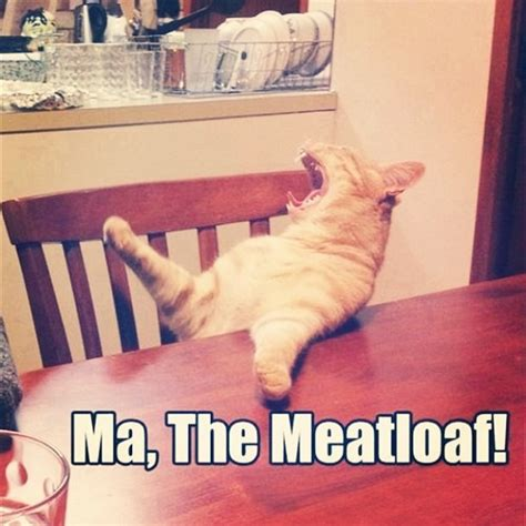Mom The Meatloaf Meme - cute it s friday again full trending