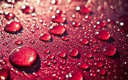 Wallpapers Water Drops Droplet Drop Rain Apple