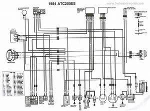 1985 Honda 250 Fourtrax Wiring Diagram