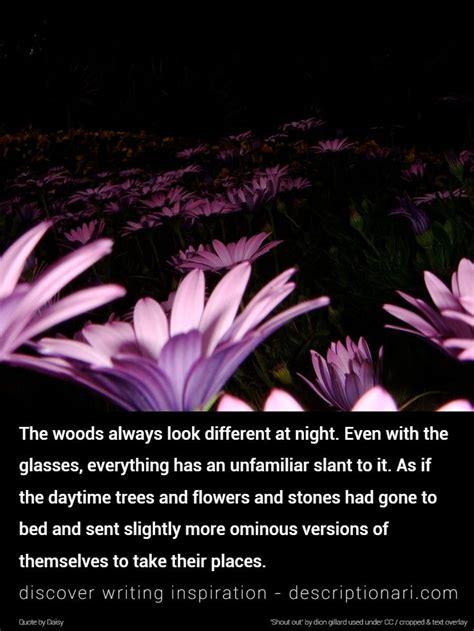 night quotes  descriptions  inspire creative writing