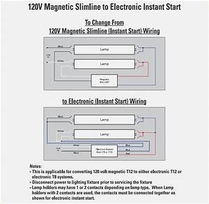 Diagram 2 Lamp T12 Ballast Wiring Diagram Full Version Hd Quality Wiring Diagram Diagramedyed Informazionihotel It