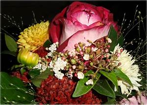 Bilder Von Blumenstrauß : ein bunter blumenstrauss bild foto von danner aus rosen fotografie 15104840 ~ Buech-reservation.com Haus und Dekorationen