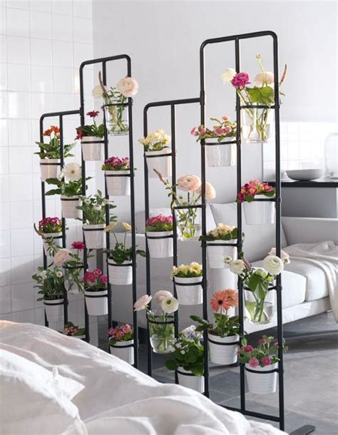 planter un pin parasol un jard 237 n en vertical ikea plants divider and plants