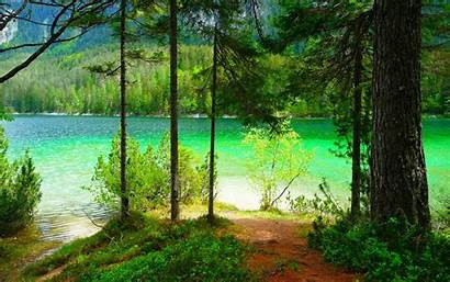 Lake Nature Forest Landscape Mountain Trees Wallpapers