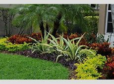 Summer Landscaping and Gardening Tips for South Florida