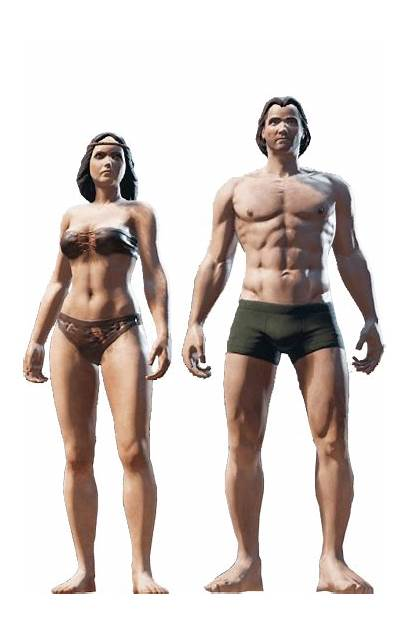 Divinity Sin Human Humans Elf Races Evolved
