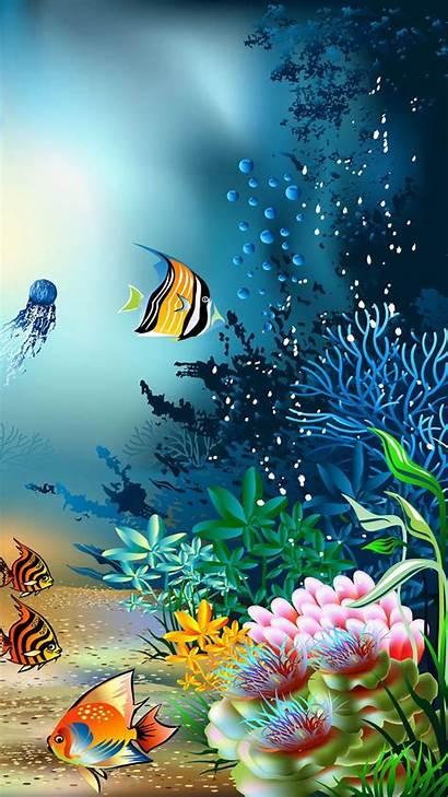 4k Coral Reef Uhd Wallpapers Phone Ultra