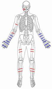 The History Blog  U00bb Blog Archive  U00bb Bones Of Man Killed On