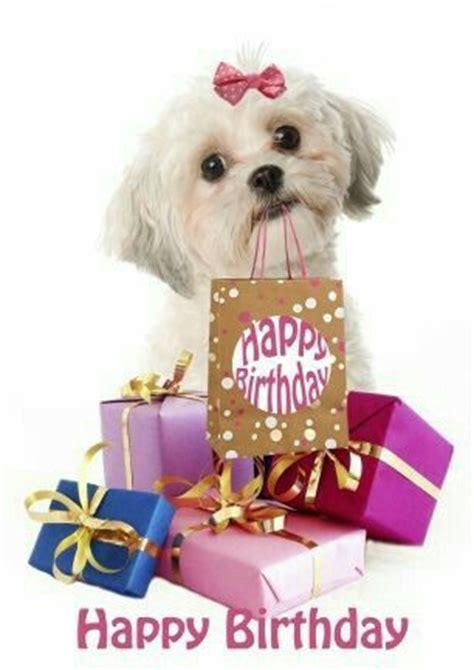 happy birthday dog friends images  pinterest