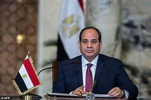 Egypt's Sisi wins second term with 96.9% of vote: state ...