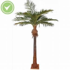 Palmier Artificiel Gifi : palmier artificiel ext rieur pas cher maison et fleurs ~ Teatrodelosmanantiales.com Idées de Décoration