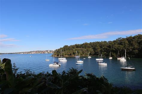 Boats Sydney by Boats In Sydney Harbour Mosman Sydney Eat Play Travel