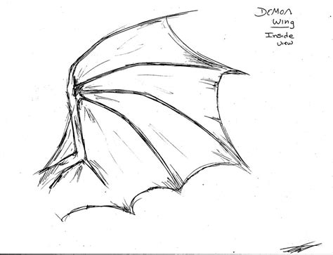 Learning how to draw a dragon can be tricky. Dragon Wings Sketch at PaintingValley.com | Explore ...