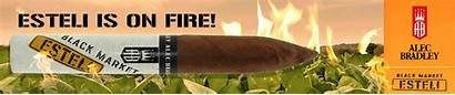 Smoke Cigars Reasons Complements Flavor Fire