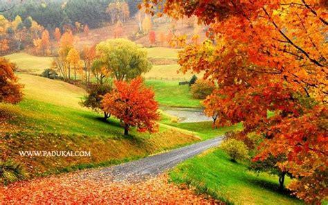 win min desktop wallpaper   nature scenery