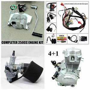 Complete 250cc Zongshen Engine   Mukuni Carby Pod Filter Wiring Harness Atv Quad