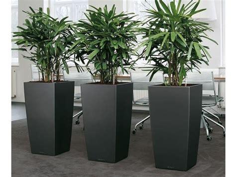 vasi per piante ricanti vasi in resina vasi per piante modelli vaso