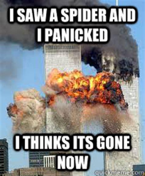I Saw A Spider Meme - giant huntsman spider memes