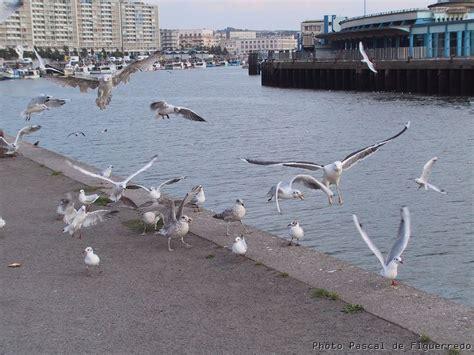 le chais boulogne sur mer le chais boulogne sur mer 28 images le port de boulogne sur mer olympus digital e300 flickr