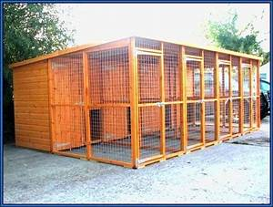 dog house kennel plans luxury dog kennel plans for pets With luxury dog pens