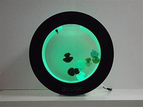 jellyfish mood l jellyfish wont sink desktop jellyfish aquarium cool stuff on