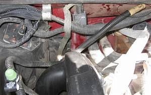 1998 S-10 Pickup Evap Service Port Hose Loose