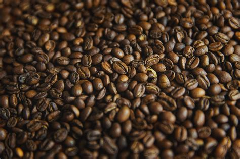 Sumatra mandheling coffee whole beans. How To Brew The Perfect Cup Of Coffee - Texas A&M Today