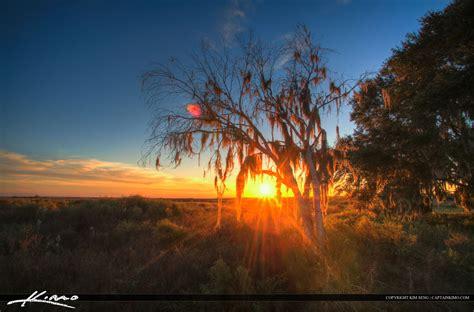 Paynes Prairie Gainesville Florida Sunset Landscape