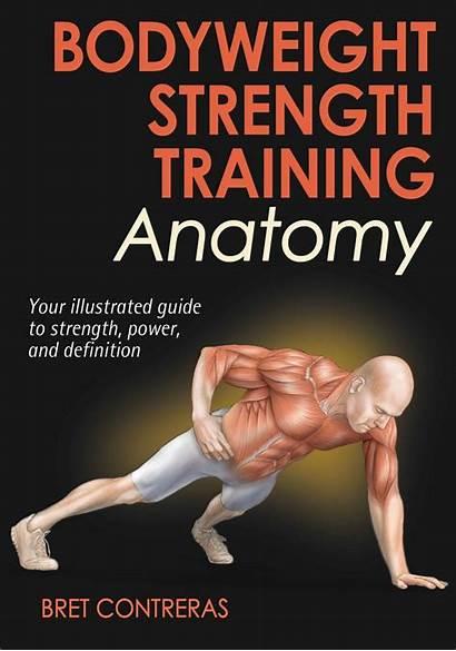 Workout Partner Resistance Strength Bodyweight Training Anatomy
