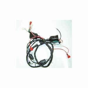 Main Harness Lifan S-ray 50- 4t  Lf50qt-26  - Motorrecambio
