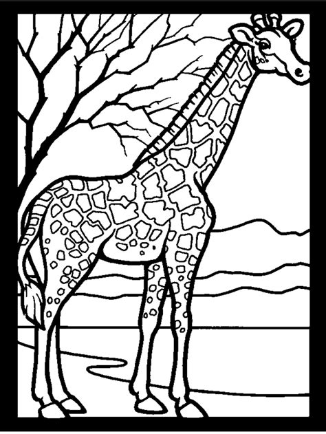 giraffe coloring pages coloring pages  print