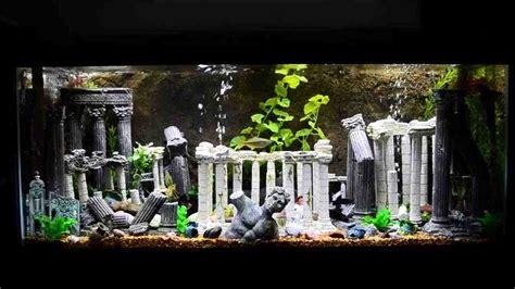 aquarium decorations aquarium decor aquarium decorations aquariums and fish