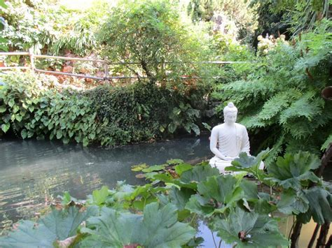 Botanischer Garten Nähe Gardasee by Heller Garden Gardasee Hotel Ferienwohnung Wetter Co