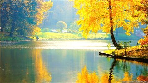 beautiful wallpapers  nature gallery
