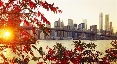 bridge foliage autumn city wallpaper