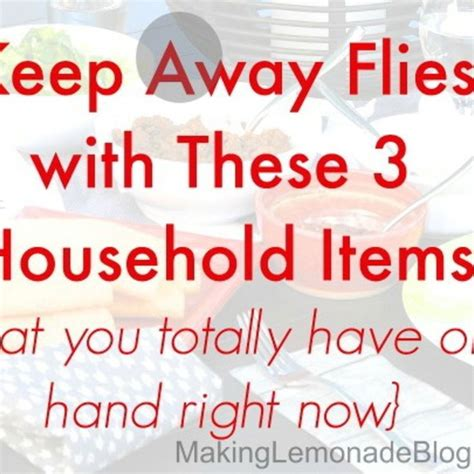 what is to keep flies away how to keep flies away with 3 home items home flies away and keep flies away
