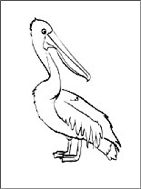 coloring page pelican coloring pages