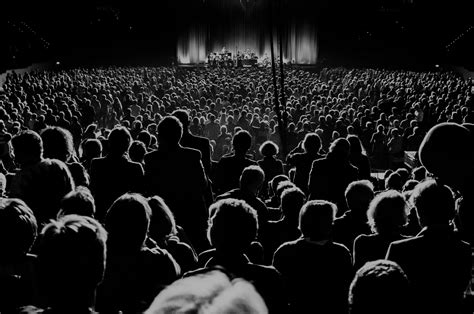 building cultural audiences  project   american